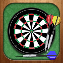 Darts Master 2014 - Pro King Player Sport Night Game 3D