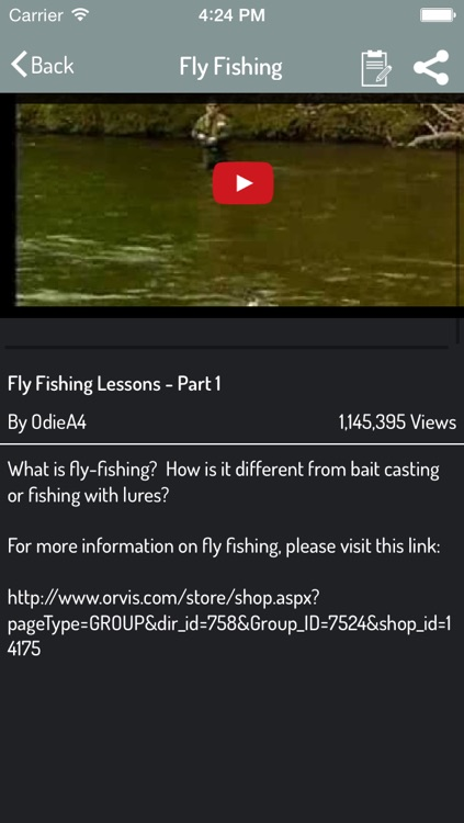 Fishing Guide - Best Video Guide