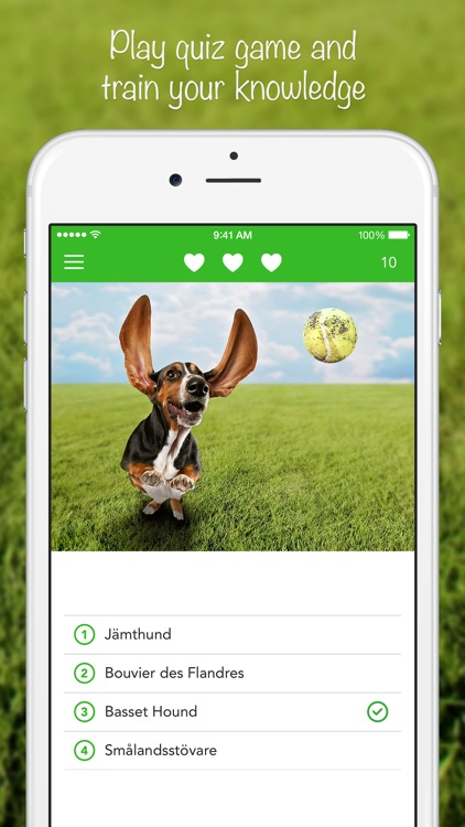 iKnow Dogs 2 PRO - NATURE MOBILE - Dog Breed Guide and Quiz Game screenshot-3