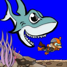 Activities of Shark in the Water