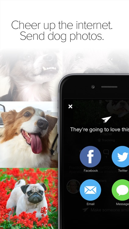 Pack Dog - Post your dog photos and meet dog owners by breed and city screenshot-4