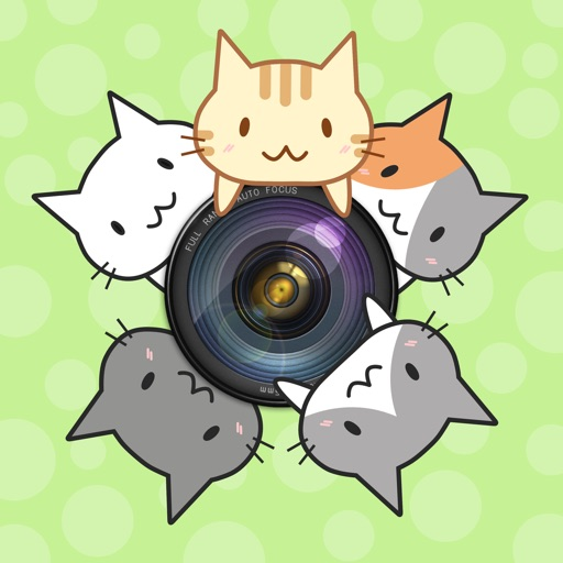 CatCamera -Take photos with cats!-