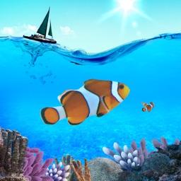 Marine Biology Glossary