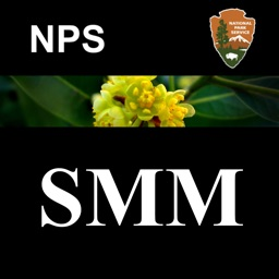 SMM WildFlowers