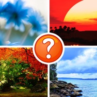 Codes for 4 Pics - Can You Guess The Word? Hack
