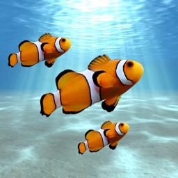 Aquarium: Tank Builder