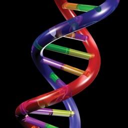 AP Biology Hardy-Weinberg Spreadsheet Tutorial