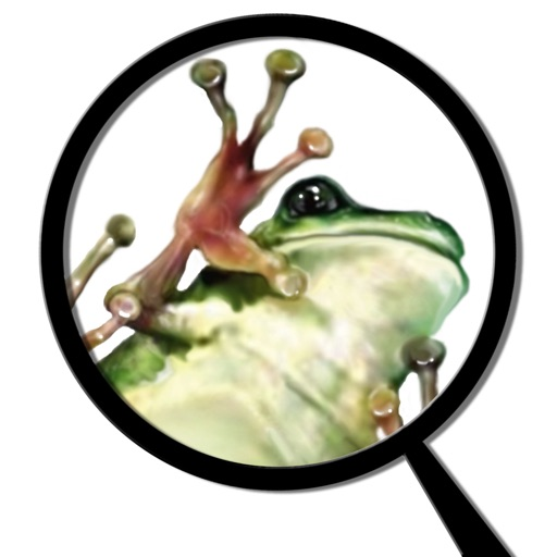 Froguts Frog Dissection HD for iPad
