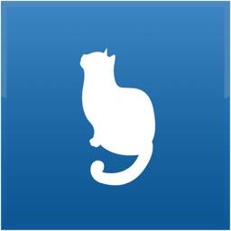 Cat Medical Agenda
