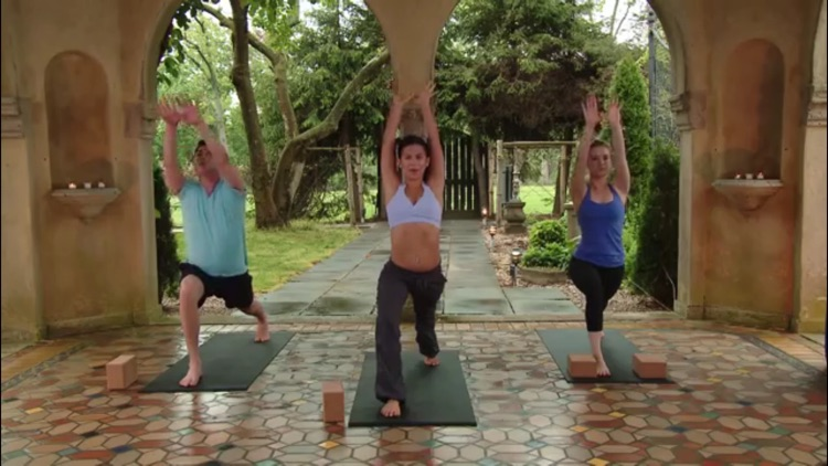 Yoga Master Class screenshot-3
