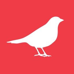 Late Bird Deals