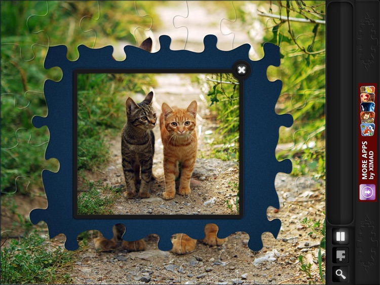 Jigsaw Puzzles: Funny Cats