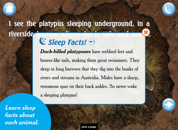 I See the Animals Sleeping: A Bedtime Story screenshot-3