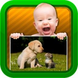 Baby Video - Animals