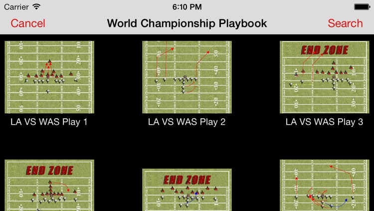 Tom Flores World Championship Playbook