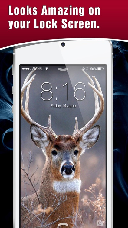 HD Deer Hunting Lock Screens & Wallpapers screenshot-3