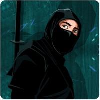 Codes for Ninja Warrior Assassin School Hack