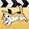 日刊ねこ動画 - CatTube 猫動画まとめアプリ