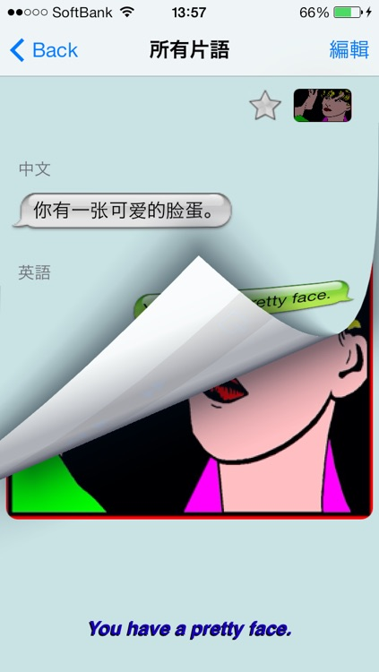 英语 - Talking Chinese to English Phrasebook + Translator screenshot-3