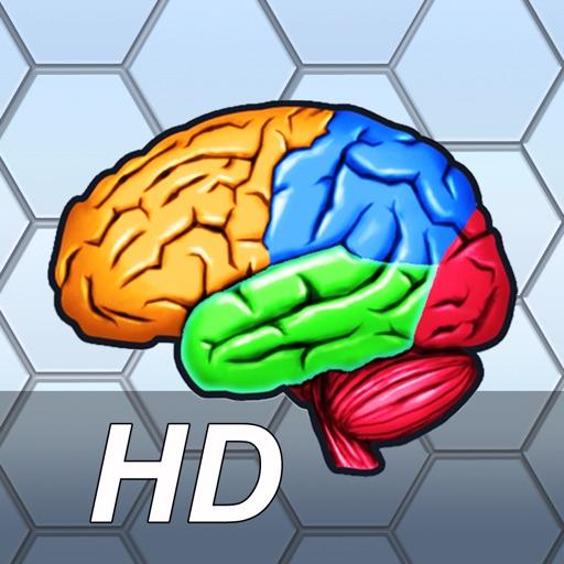 More Brain Exercise with Dr. Kawashima HD