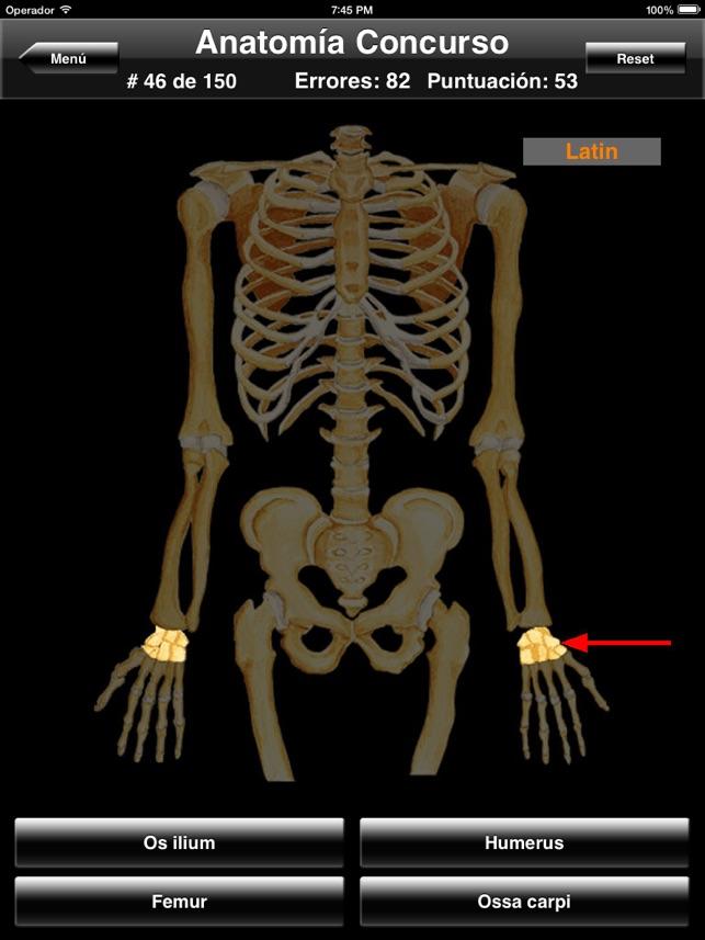 Anatomía Concurso para iPad en App Store