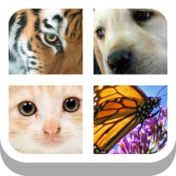 Close Up Animals 2015 - Guess the Zoo, Farm or Pet Pics Trivia Quiz Free by Mediaflex Games
