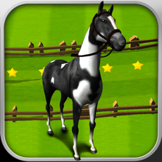 Activities of Horse Derby Race Training