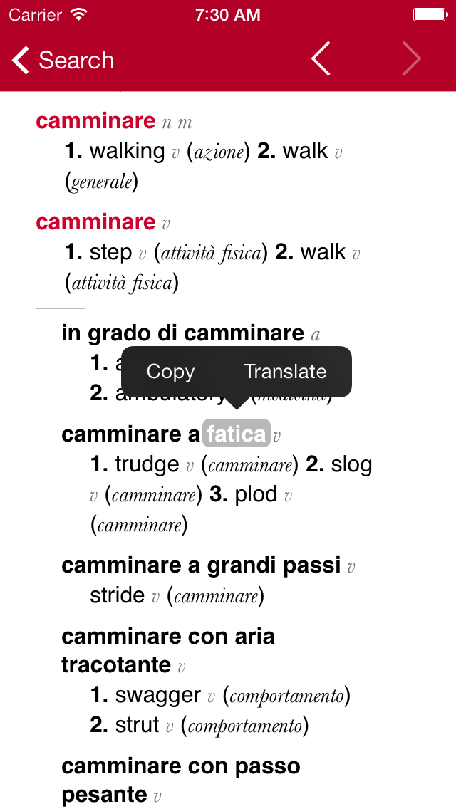 Italian-English Dictionary from Accio screenshot three