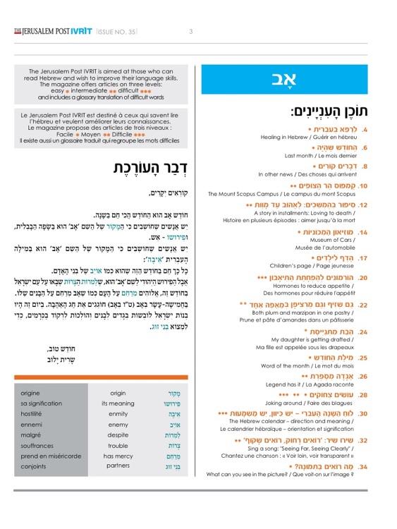 The Jerusalem Post Ivrit