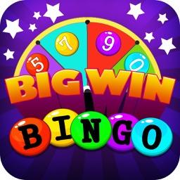 Bingo Big Win