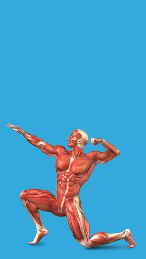 Student Muscle & Bone Anatomy 3D Visual Dictionary with Quiz Master ...