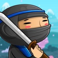 Activities of Ninja Fight Training
