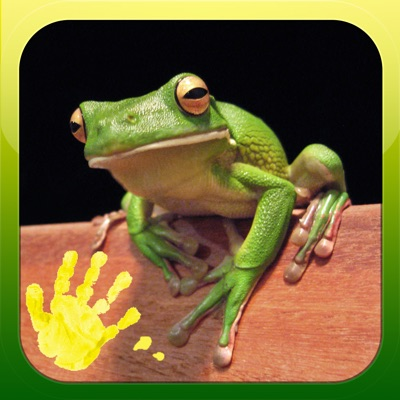 Play and Learn Animals - Free Baby Flashcard Game ios app