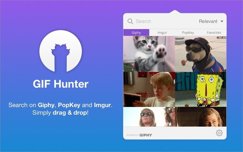 GIF Hunter Screenshot