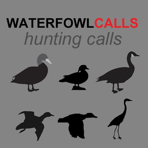 Waterfowl Hunting Calls - The Ultimate Waterfowl Hunting Calls App For Ducks, Geese & Sandhill Cranes & BLUETOOTH COMPATIBLE