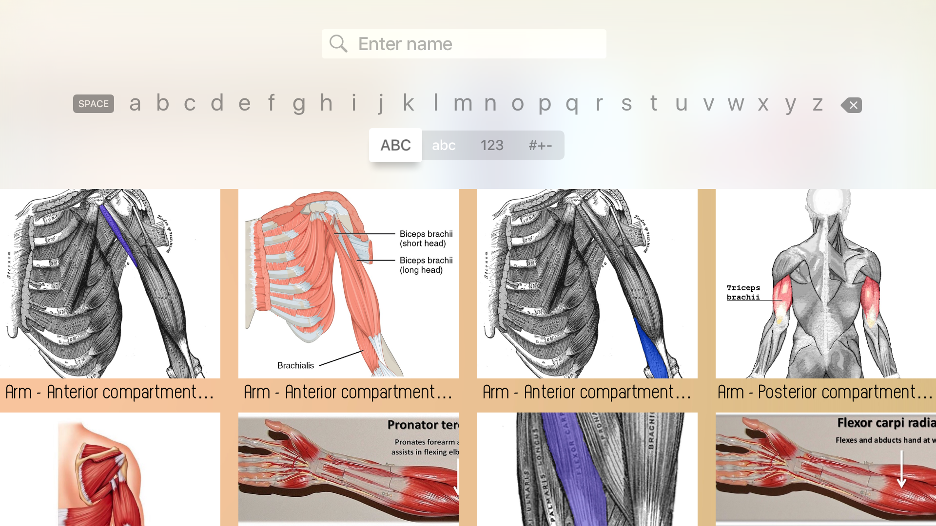 Human Muscles Guide screenshot 20