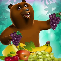 Hungry Fruit Bear Harvest Blast Matching Puzzler Games Free