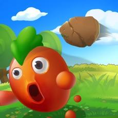 Activities of Fruit Fruit Go