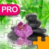Beautiful Jigsaw Pro - Quest Of Puzzles 4 Kids