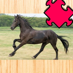 Activity Pony & Cute Animal Puzzle With Small Ponies and Horses For Kids & Family