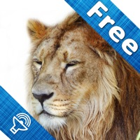 Codes for Animal sounds and pictures, hear jungle sound in Kids zoo, Petting zoo with real images and sound Hack