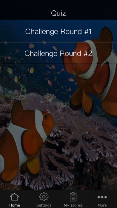 Quiz for Finding Dory - Including trivia questions and