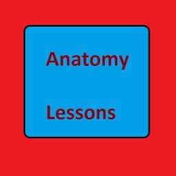 AnatomyLessons