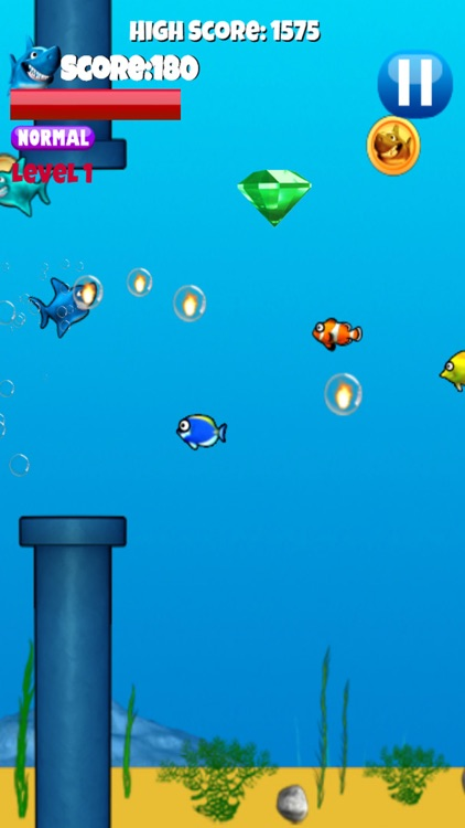 Jumpy Shark - Underwater Action Game For Kids