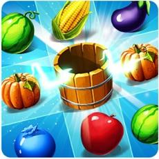 Activities of Fruit Jelly: Crush Mania