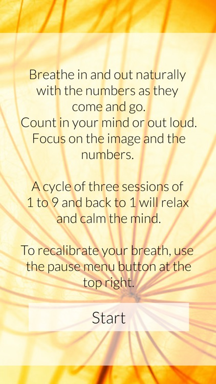 Calm Mind - Mindfulness Counting screenshot-4