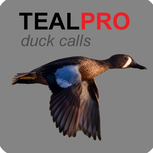 Duck Calls for Teal - With Bluetooth - Ad Free