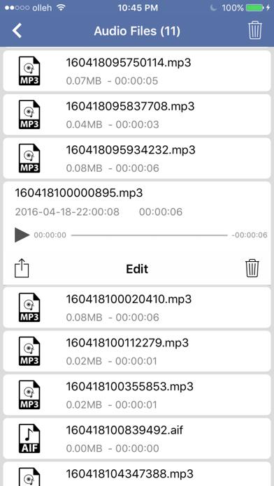 Convert Text To Audio File screenshot three