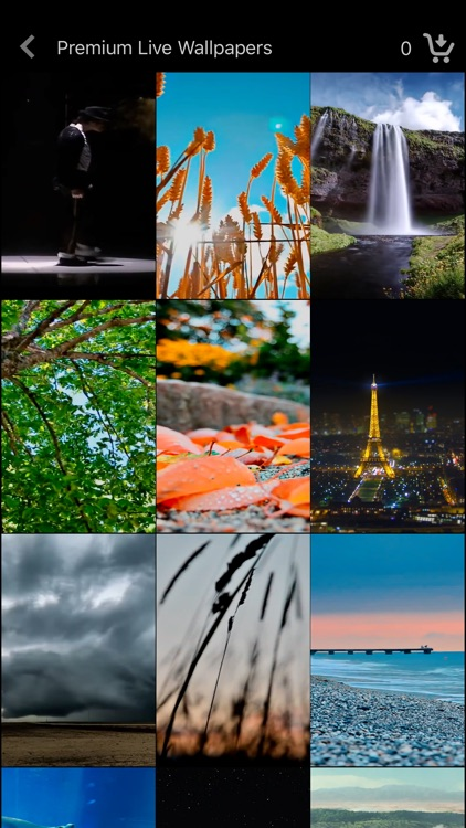 Live Wallpaper Collections