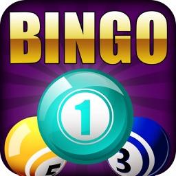 Bingo Bumper Prize Pro